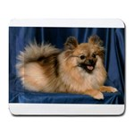 Calie mousepad - Large Mousepad
