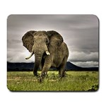Al s New Mousepad - Large Mousepad
