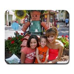 3 Kids in Orange  Dollywood 2010 - Large Mousepad