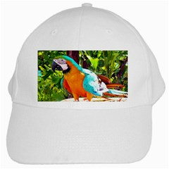 animal1 White Cap from ArtsNow.com Front