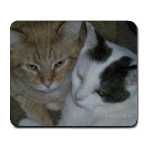 My Kitties By Cecilia Kennison   Large Mousepad   Mmum2gq23phd   Www Artscow Com Front