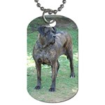 Nala.... - Dog Tag (One Side)