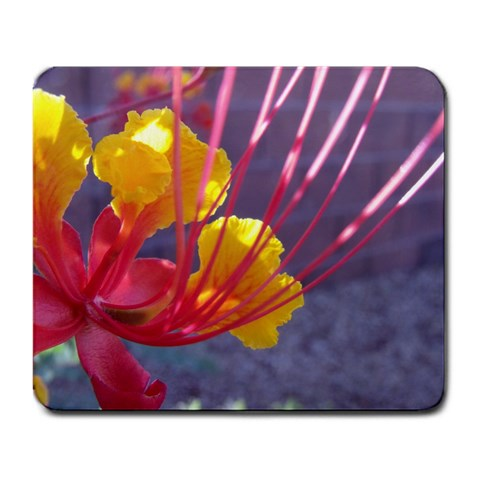 By Artist Cassie   Large Mousepad   5gbs3hddzz3g   Www Artscow Com Front