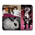 Pets - Collage Mousepad