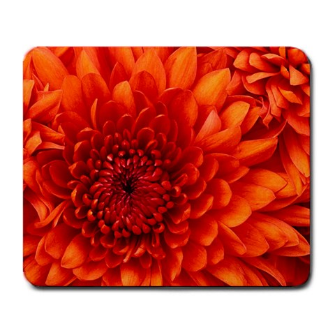 Believe In Your Dreams: Chrysanthemum Flower By Linda Daley   Large Mousepad   Dex0s2e15trf   Www Artscow Com Front