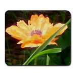 Beautiful Poppy - Large Mousepad