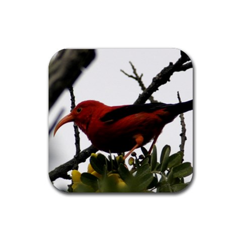 Coasters By Janet   Rubber Coaster (square)   N44wukw29t1p   Www Artscow Com Front