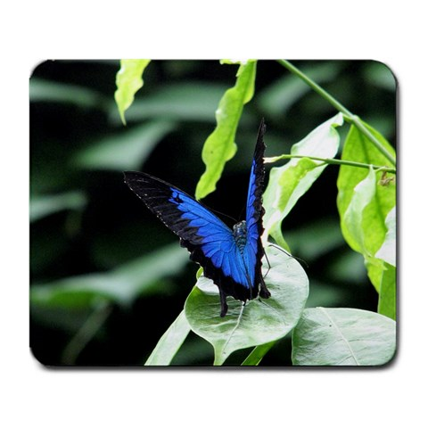Mousepad By Elizabeth Davey   Large Mousepad   Mnoxgct59k1i   Www Artscow Com Front