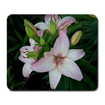 flower - Collage Mousepad