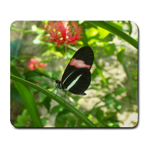 Butterfly Mousepad By Maria Smith   Large Mousepad   Ta44p1g71j80   Www Artscow Com Front