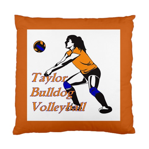 Taylor Volleyball Cushion By Cynthia Jacobs Nowlin   Standard Cushion Case (one Side)   Rw9ufeh89pdo   Www Artscow Com Front