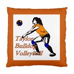 Taylor Volleyball Cushion - Cushion Case (One Side)