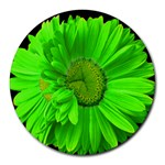 LimeGreen Painted Daisy Mouse Pad - Round Mousepad