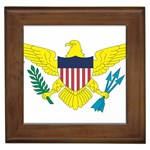 Flag_Virgin Islands, Us Framed Tile