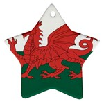 Flag_Wales Ornament (Star)