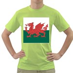 Flag_Wales Green T-Shirt