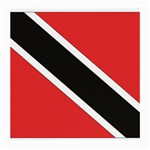 Flag_Trinidad & Tobago Glasses Cloth (Medium)