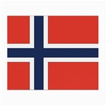 Flag_Norway Glasses Cloth (Small, Two Sides)