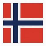 Flag_Norway Glasses Cloth (Medium, Two Sides)
