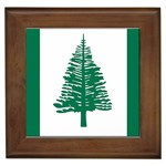Flag_Norfolk Island Framed Tile