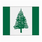 Flag_Norfolk Island Glasses Cloth (Small)