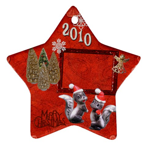 Skunk Remember When 2010 Ornament 14 By Ellan   Ornament (star)   Ao6glasek0n3   Www Artscow Com Front