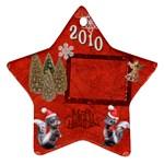 skkunk Remember when 2010 ornament 15 - Ornament (Star)