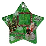 lantern 2010 ornament 81 - Ornament (Star)