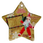 santa remember when 2010 ornament 173 - Ornament (Star)