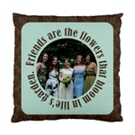 Friends 2 Sided Cushion - Standard Cushion Case (Two Sides)