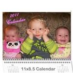calemdar 2010 - Wall Calendar 11  x 8.5  (12-Months)
