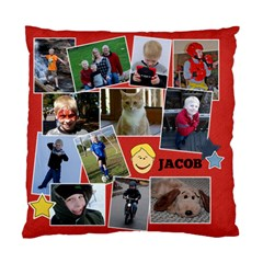 Jacob Cushion Case By Nicole Nalley   Standard Cushion Case (two Sides)   9bxqymst3jn0   Www Artscow Com Front