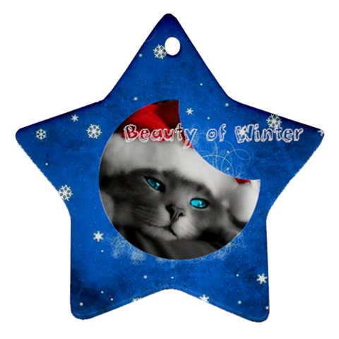 Beauty Winter By Jenia   Ornament (star)   6ws0iydq1hhf   Www Artscow Com Front