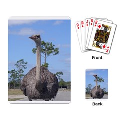 Ostrich 2 Playing Cards Single Design by photogiftanimaldesigns