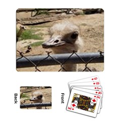 Ostrich 3 Playing Cards Single Design by photogiftanimaldesigns