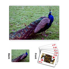 Peacock 3 Playing Cards Single Design by photogiftanimaldesigns