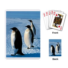 Penguin Playing Cards Single Design by photogiftanimaldesigns