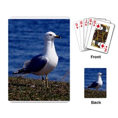 Seagull Playing Cards Single Design by photogiftanimaldesigns