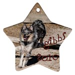 Gibbs Ornament - Star Ornament (Two Sides)