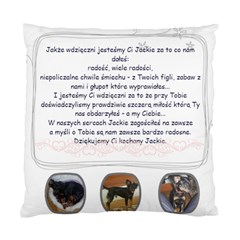 Pillow Jackie By Margaret   Standard Cushion Case (two Sides)   U3h052095dmz   Www Artscow Com Back