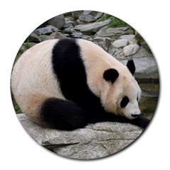 Giant Panda Round Mousepad by ironman2222