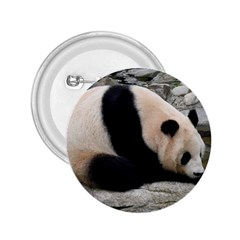 Giant Panda 2 25  Button