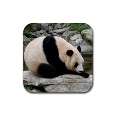 Giant Panda Rubber Square Coaster (4 Pack) by ironman2222
