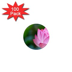 Red Pink Flower 1  Mini Magnet (100 Pack)  by ironman2222