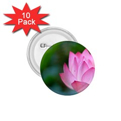 Red Pink Flower 1 75  Button (10 Pack)  by ironman2222