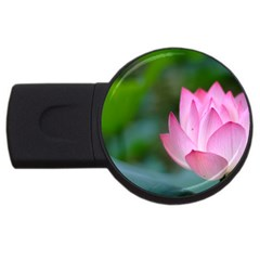 Red Pink Flower Usb Flash Drive Round (2 Gb) by ironman2222