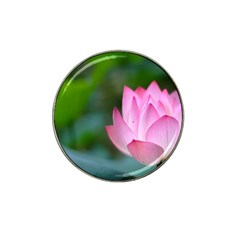 Pink Flowers Hat Clip Ball Marker (10 Pack) by ironman2222