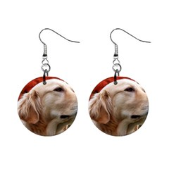 Dog Photo Cute 1  Button Earrings by adriantesting