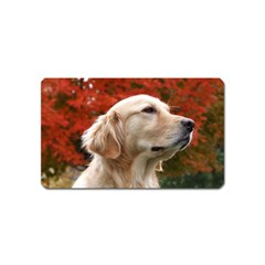 Dog Photo Cute Magnet (name Card) by adriantesting