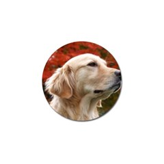 Dog Photo Cute Golf Ball Marker (4 Pack) by adriantesting